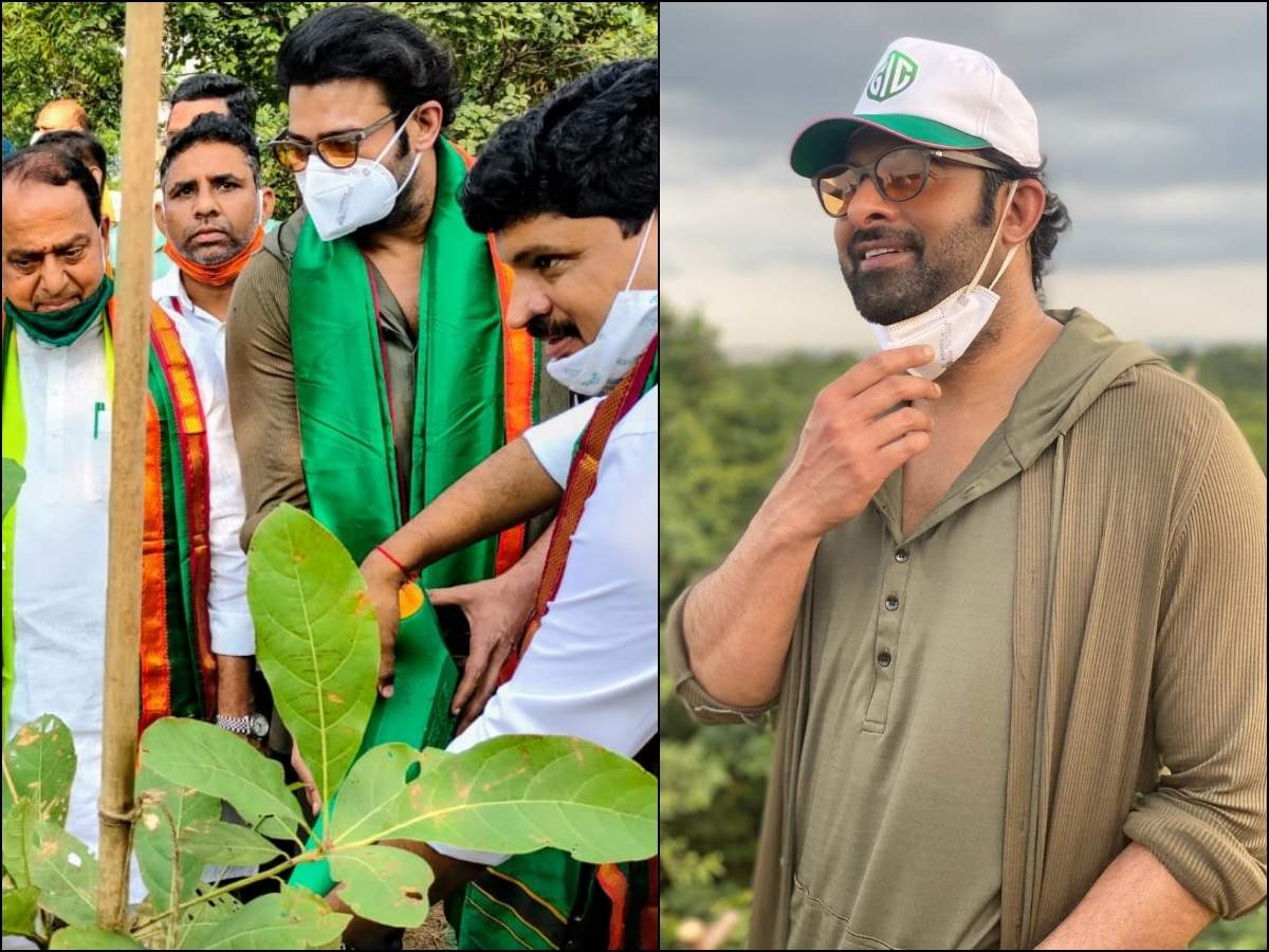 Prabhas adopts 1650 acres of forest land in Khazipally