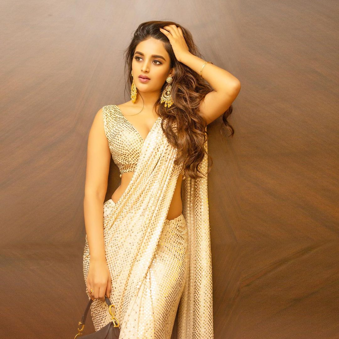 Actress Niddhi Agerwal Hot and Sexy photos and movie updates