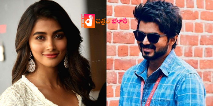 pooja-hegde-in-vijay-next-movie