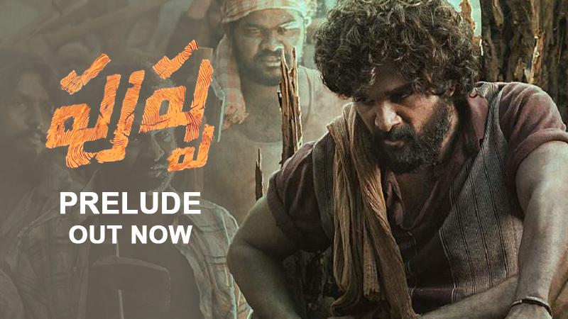Allu Arjun Rashmika Mandanna pushpa movie Prelude video Released