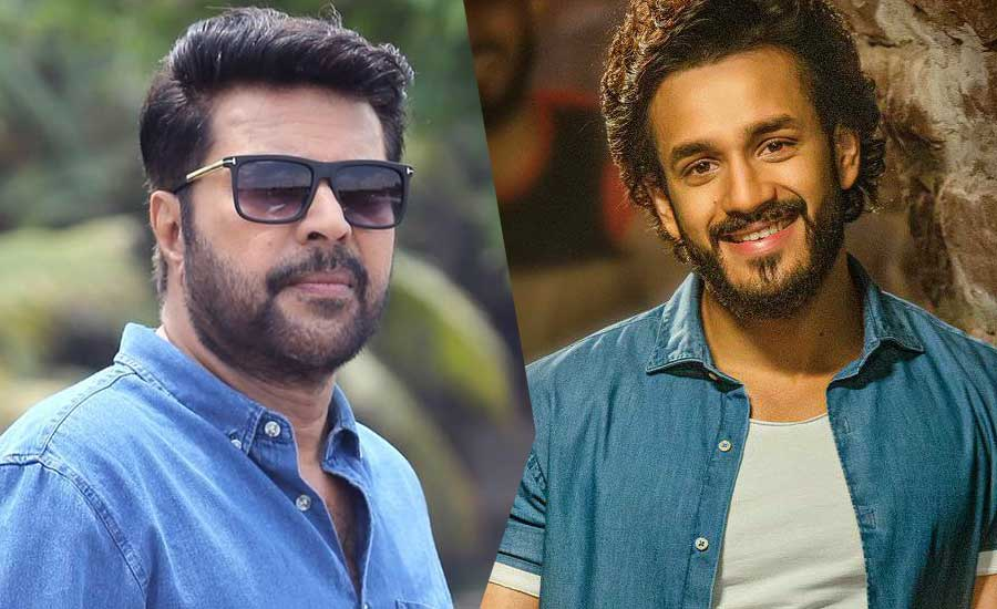 Huge Remuneration to Mammootty for Akhil Agent