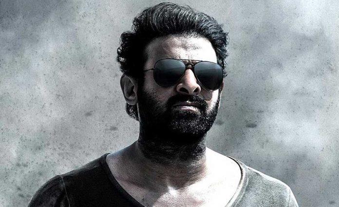 Prabhas Salaar Movie Shooting Update