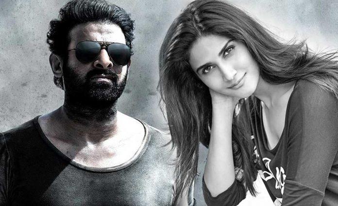 Vani Kapoor Key role in Prabhas Salaar Movie
